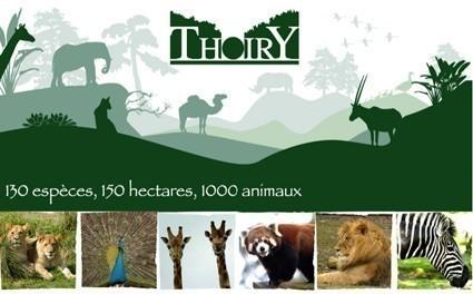 Le zoo de beauval tout pour les femmes for Parc animaux yvelines