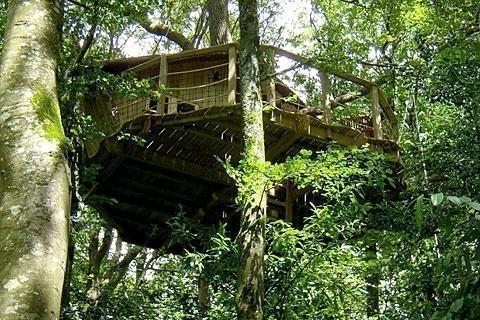 Cabanes dans les arbres tout pour les femmes - Cabane jardin migros caen ...