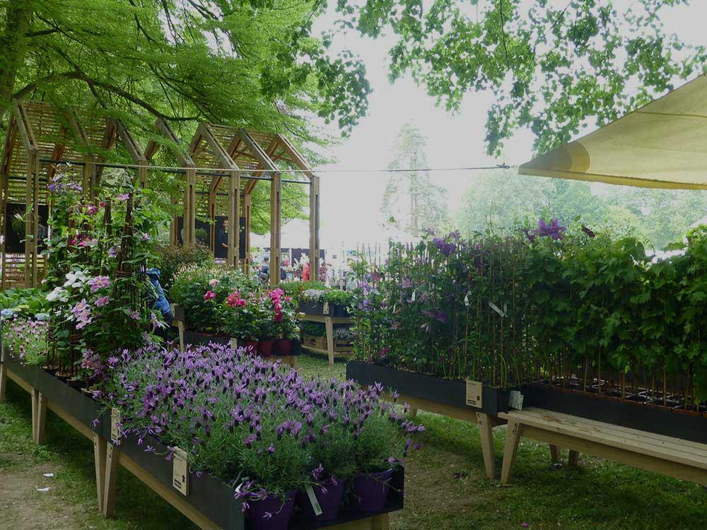 Journ es des plantes chantilly toutpourlesfemmes - Journee des plantes chantilly ...